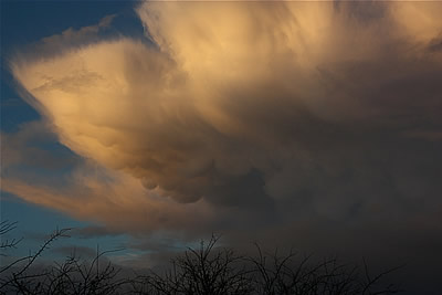 Sunset Mammatus Display - Nov 18th 2010